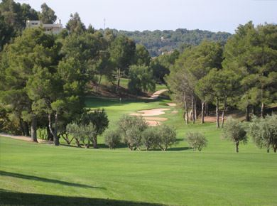 Torneo 9 Hole Summer Competition
